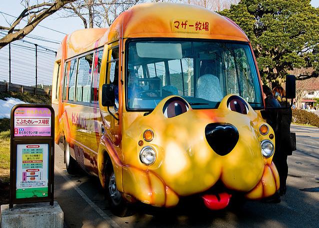 lnpidgoyunrtdshshh8ng - Самые необычные автобусы мира